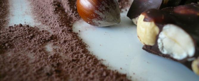 Chocolat plaisir hilo santé nutritionniste Julie Lapointe
